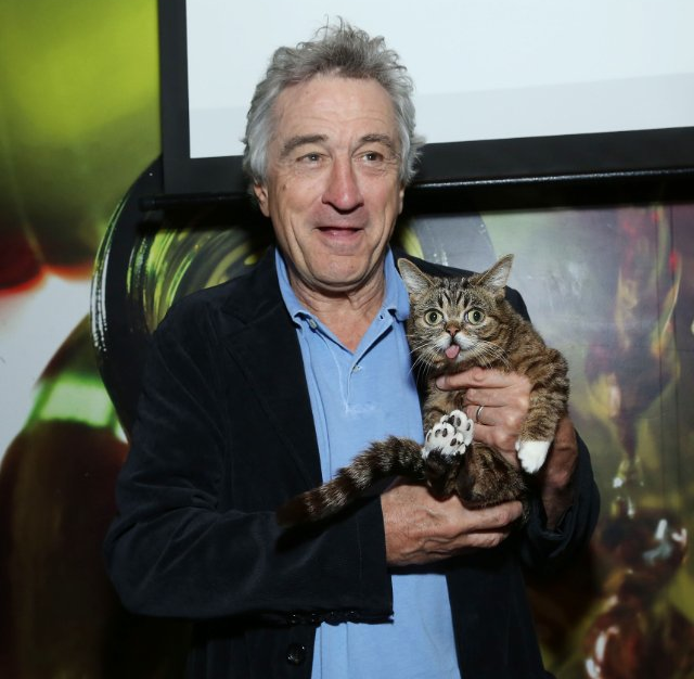 That includes making this picture of Robert De Niro holding celebri-cat Lil' Bub the wallpaper on my computer.